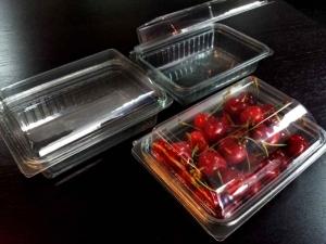 Caserole pentru fructe